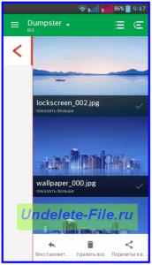 Удаленные изображения на android