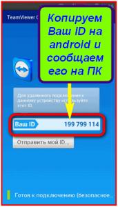 Ваш ID в программе