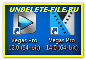 Sony Vegas Pro 12 i 14 versija 64 bit