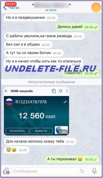 Earned 12560 rubles in telegrams